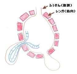 鼠径ヘルニア 大腿ヘルニア 脱腸 閉鎖孔ヘルニア 嵌頓 腹腔鏡 手術 高槻 北摂 大阪